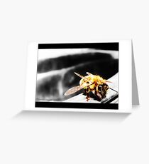 I, Bee Greeting Card