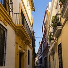 Gallivanting Around Seville is Pure Charm - Houses in Andalusian Yellow by Georgia Mizuleva