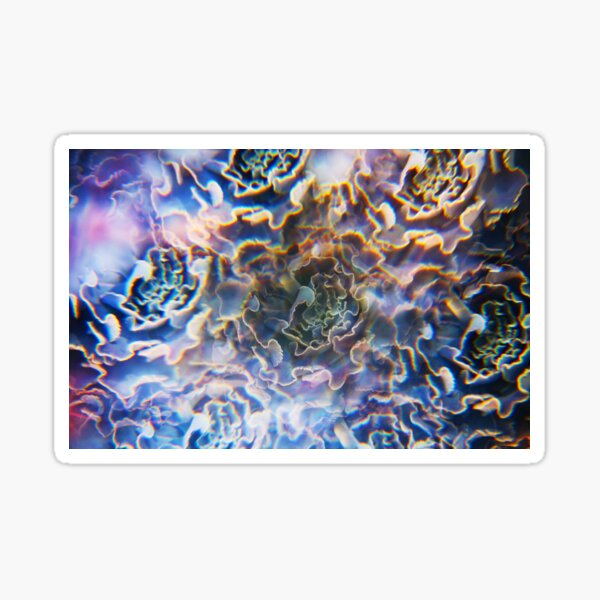 Succulent Photographed Through Prism Filter Sticker