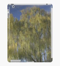On Reflection #1 iPad Case/Skin