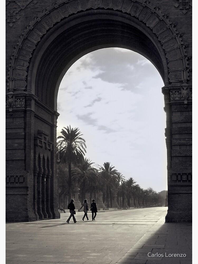 The Gate  by carloslorenzo