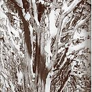 Snow tree by andytechie