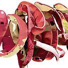 Garrofes Vermelles by BANDERUS MARTIN