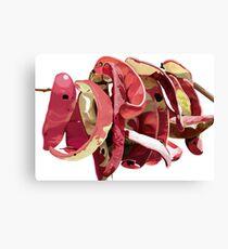Garrofes Vermelles Canvas Print