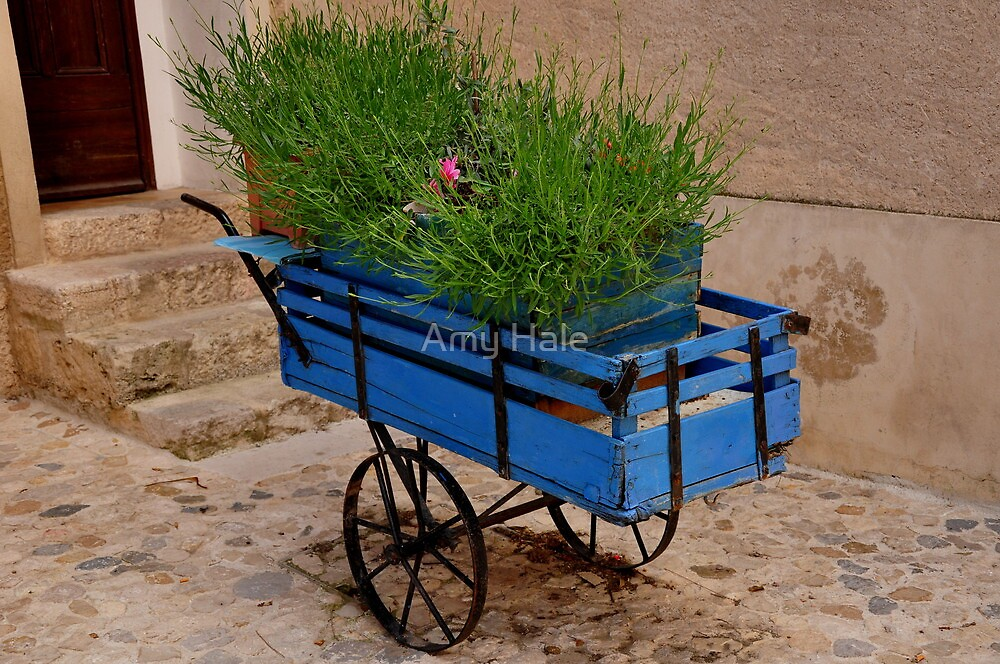 Blue Wheelbarrow by Amy Hale