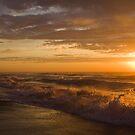 90 Mile Beach - Vic Australia by Patricia Gibson