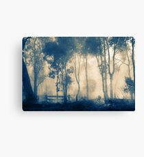 After The Fire - Frankland Canvas Print
