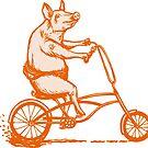 « Cochon à vélo » par Amélie  Legault