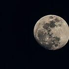 Moon Portrait by Bob Hardy