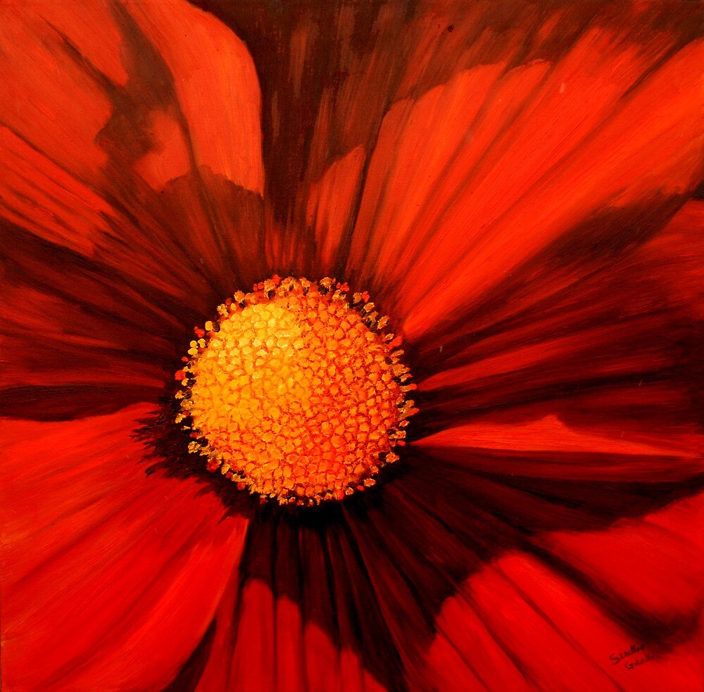 Red Cosmos Center by sesillie
