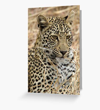 Vegetarian Leopard?  Greeting Card