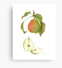 Forelle Pear Canvas Print
