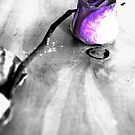 The purple rose by Jayson Gaskell
