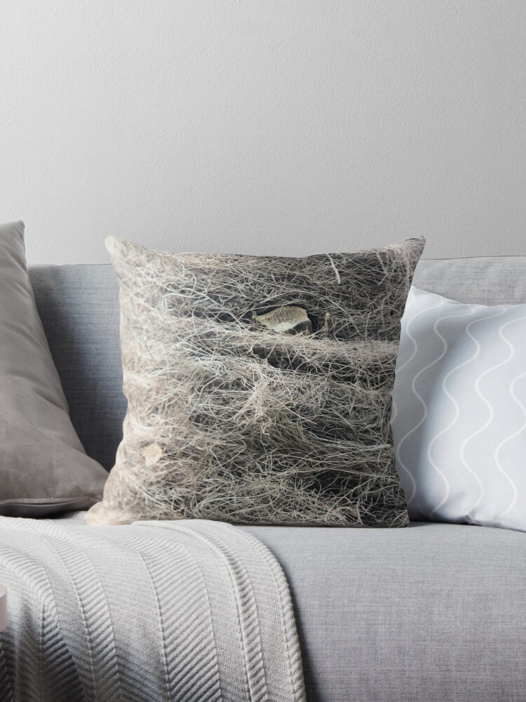 Textured tree bark by chihuahuashower