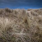stormy skies and dunes by codaimages