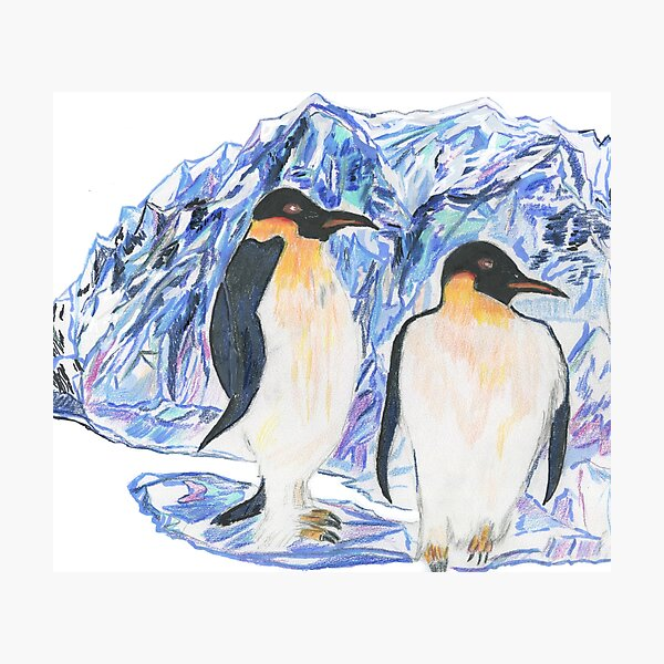 The Emperor Penguins On The Ice  Photographic Print