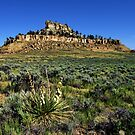 Castle Butte, North of Pompey's Pillar, Montana by James Larson