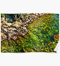 Stillwater River at Woodbine, Beartooth Mountains, Montana Poster