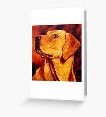 Labrador Dignity Greeting Card