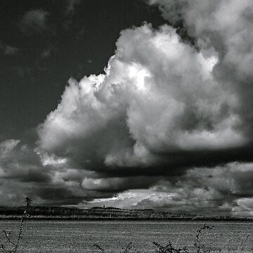 Salisbury Plain  by widdy170