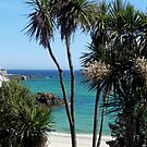 Looking Towards St. Ives from St. Erth by © Loree McComb