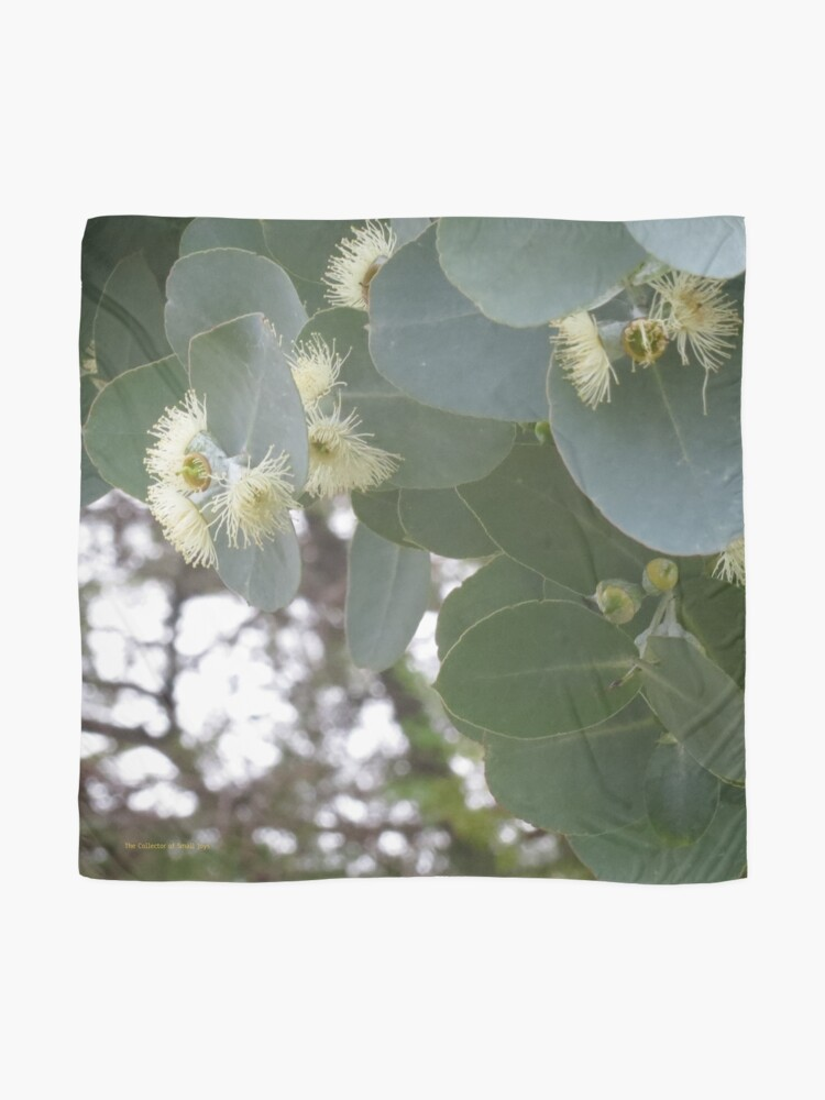 Alternate view of gum blossom Scarf
