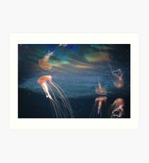 The Berlin Zoo - Jelly Fish Art Print