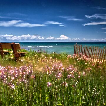 A Bench With a View by kdxweaver