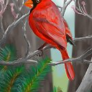 Winter Cardinal by ConnorMackenzie