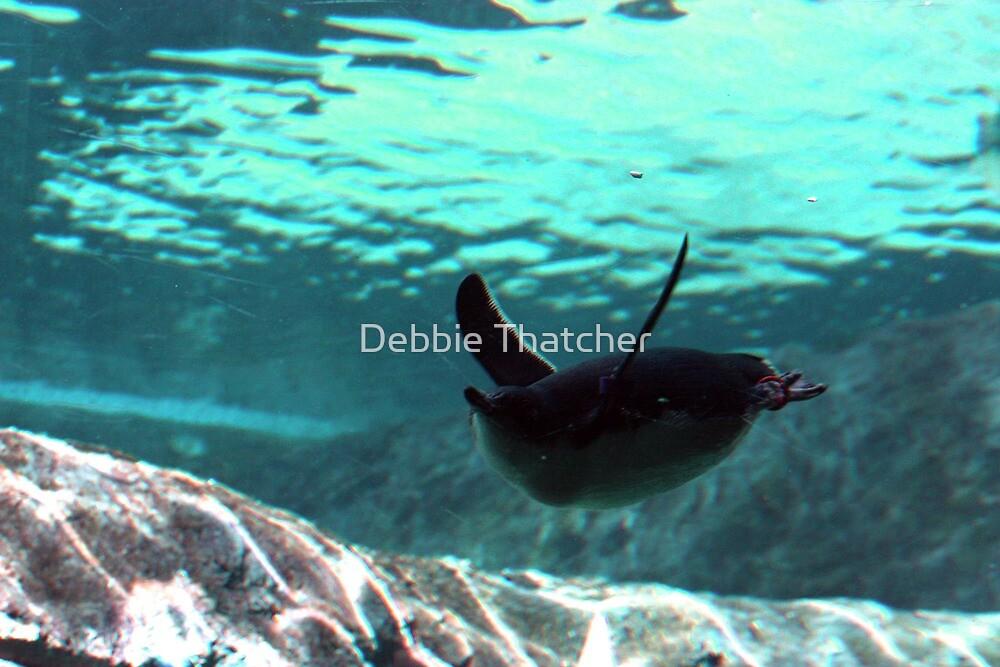 Graceful - Little Penguin by Debbie Thatcher
