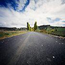 Road to Ben Lomond by Sue Hammond