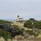 Oregon Coast Lighthouse  by CanOverland