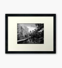 winter morn Framed Print