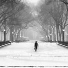 «Mujeres en el parque central y la nieve» de Randy  LeMoine