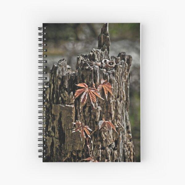Virginia creeper Spiral Notebook