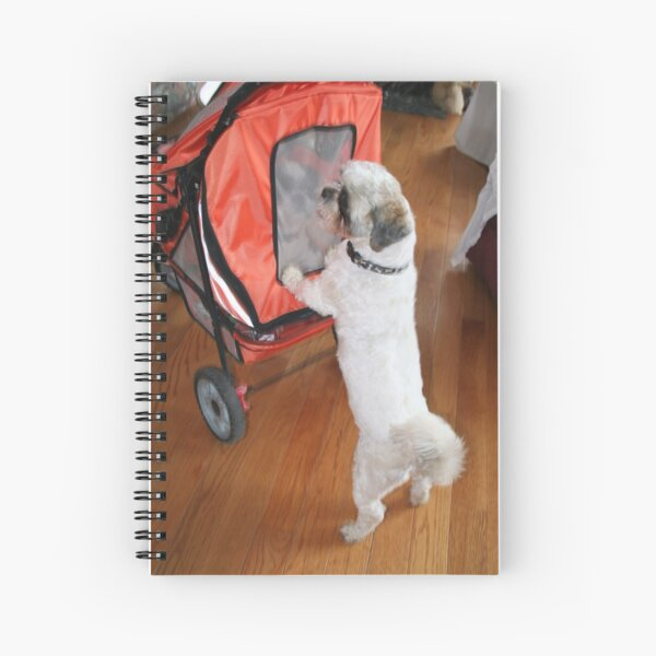 Gus going for a stroll Spiral Notebook