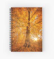 Exteme Fall Spiral Notebook
