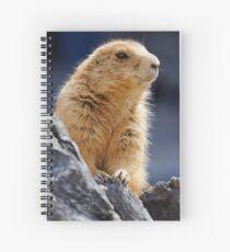 COOL Spiral Notebook