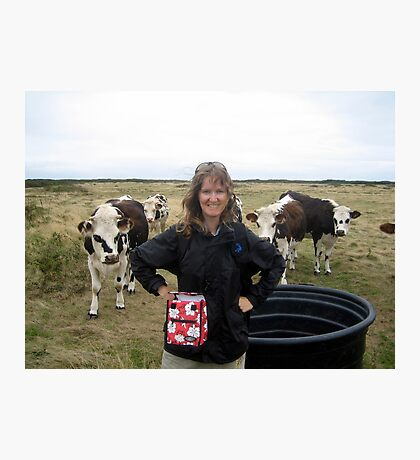 Lovely cows Photographic Print