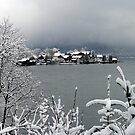 Winter Feeling by Daidalos