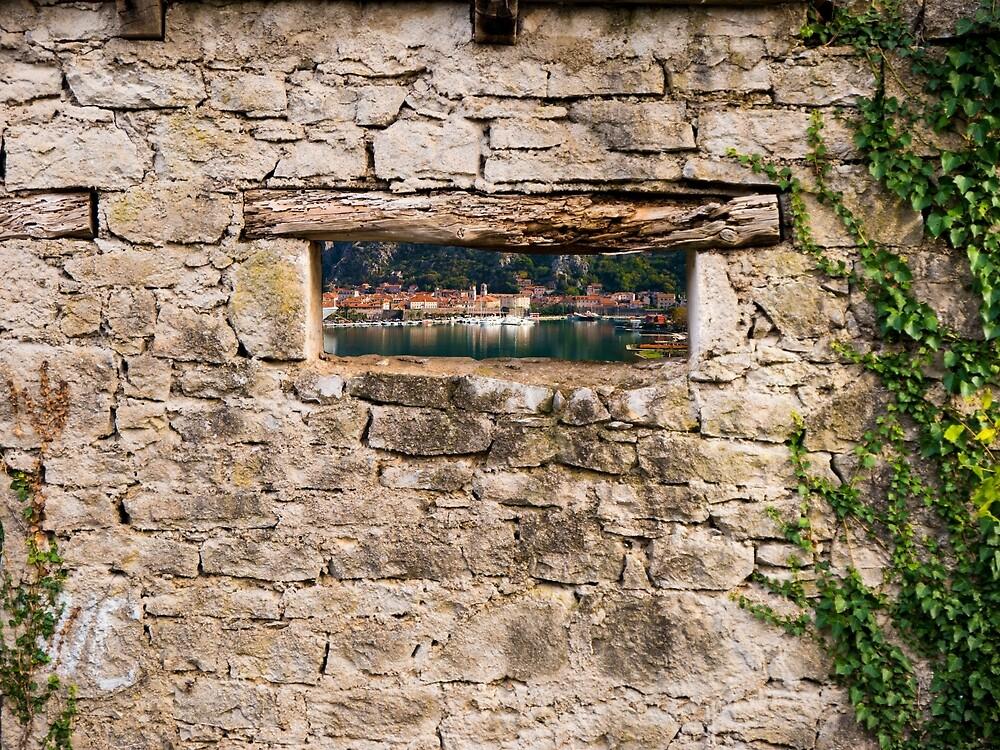 Through the Window by Rae Tucker