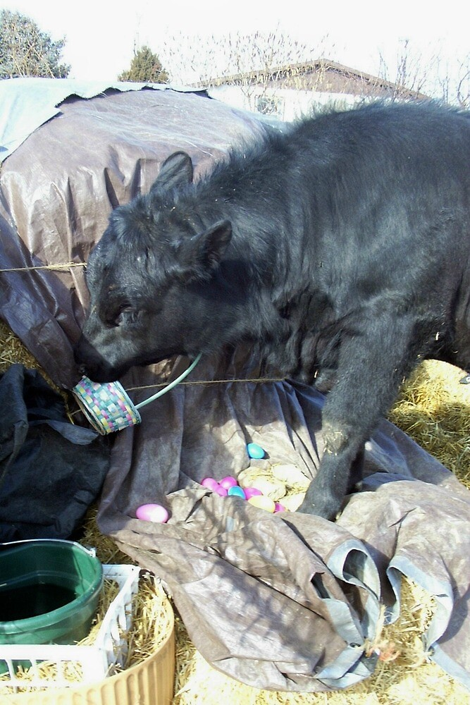 Easter Bovine Preparations by JobieMom