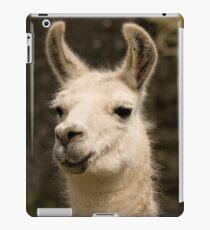 Lama iPad-Hülle & Klebefolie