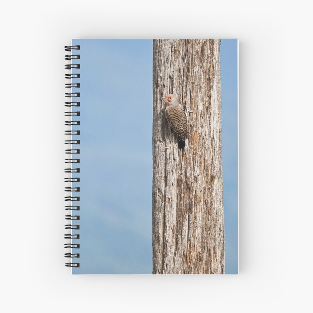 Flicker on a Pole Spiral Notebook