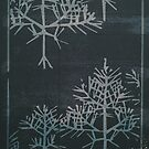 Snowflakes by Sybille Sterk