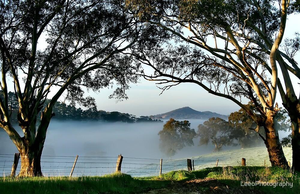 ~ Nairne ~ Adelaide Hills ~ II by LeeoPhotography