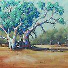 Dry Sandy Riverbed, Silverton by Mick Kupresanin