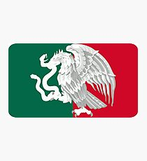 Reimagined Mexican Flag Photographic Print