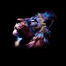 Lion by talipmemis