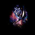 Tiger by talipmemis